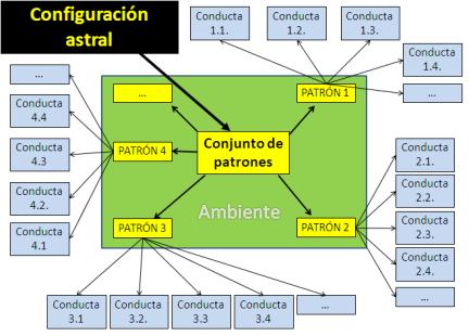 patrones y conductas