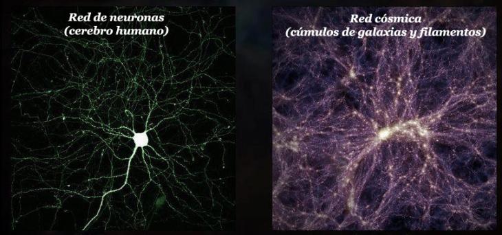 Comparación de una célula del sistema nervioso y un cúmulo de galaxias