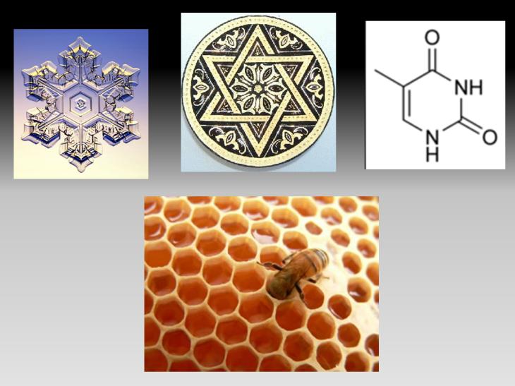 símbolos y multireferencialidad